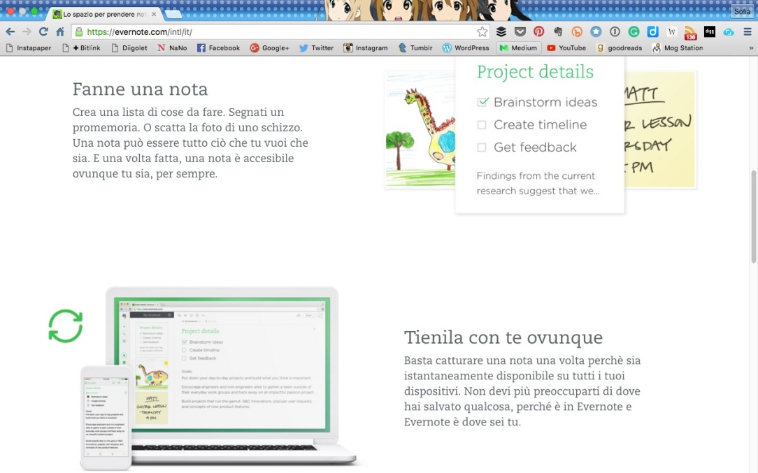 Evernote Web Splash Page Detail