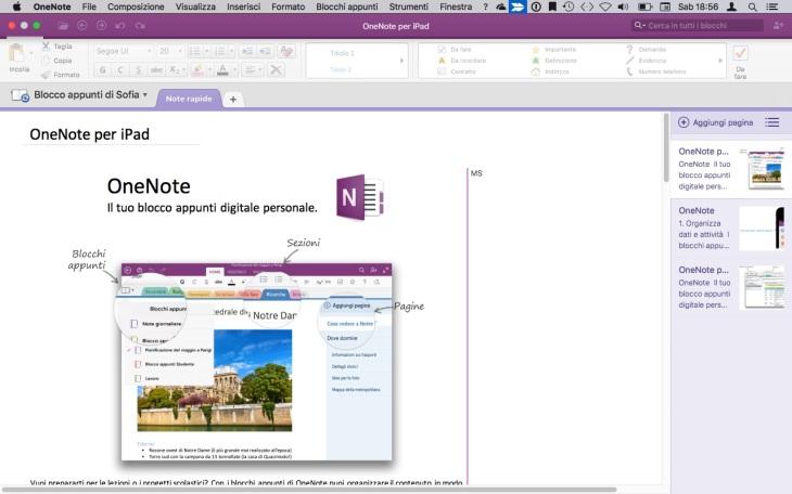 Screenshot di Microsoft One Note Desktop